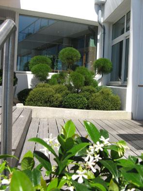 tonte taille de haie entretien pelouse veille phytosanitaire lagage abattage jardin. Black Bedroom Furniture Sets. Home Design Ideas