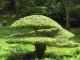 la maison familiale terrain d 39 exp rimentation jardin breton design. Black Bedroom Furniture Sets. Home Design Ideas