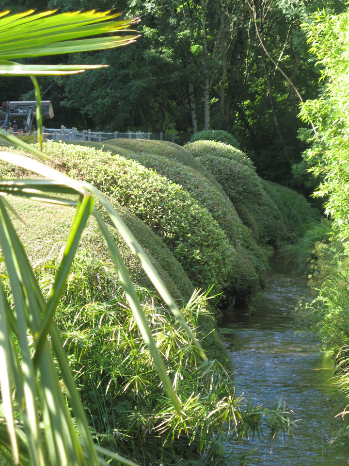 La maison familiale terrain d 39 exp rimentation jardin for Cherche paysagiste